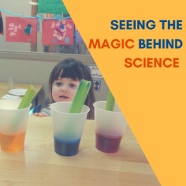Seeing the magic behind science